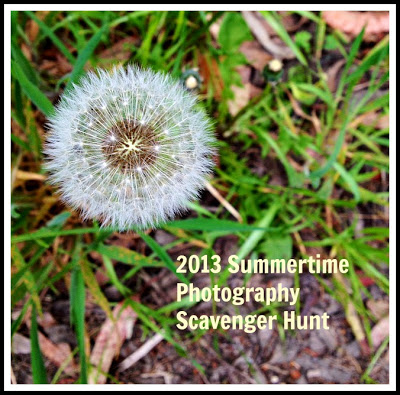 2013photohunt