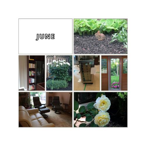 6_June_1