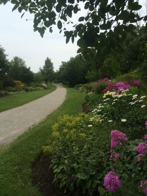 Nottinghill Park Gardens2
